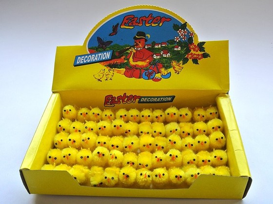 Kurczaczek Wielkanocny KOD X008